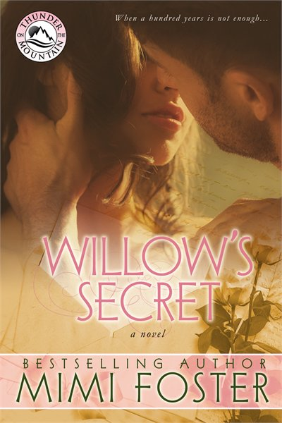 Mimi Foster Willow's Secret